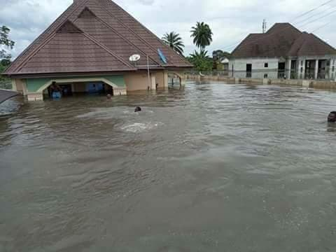 Residents yell as sea erodes embankment, houses in Delta community