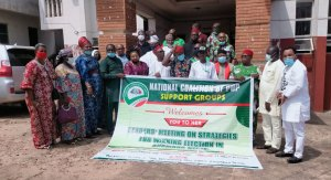 Coalition of PDP support groups charge Anambra on transparent primaries