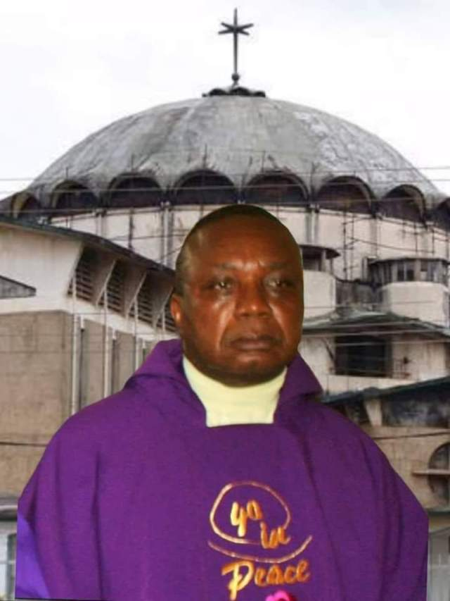 Imo catholic priest freed after one night in kidnappers den