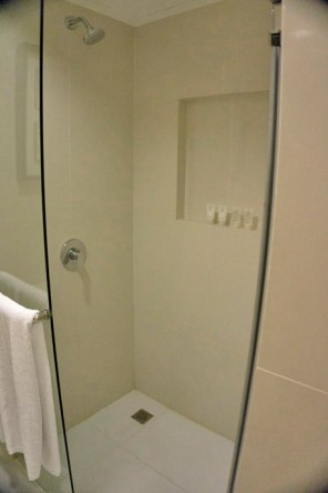 THE QUEST HOTEL – CEBU CITY, PHILIPPINES - The shower