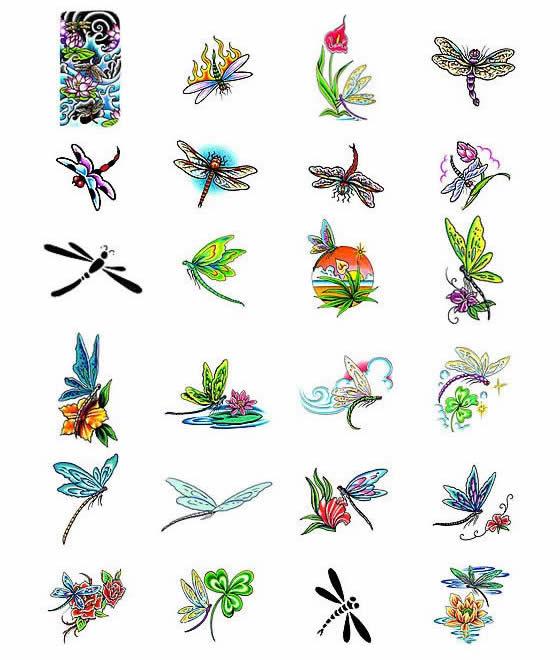 Source url:http://www.tattootalent.com/dragon-fly-tattoo-designs