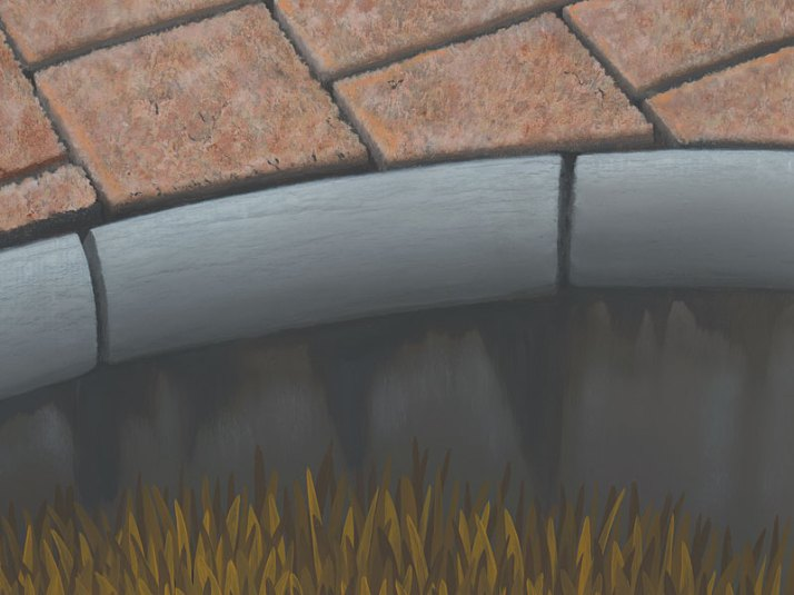Detail Polytrichum Antrum holes