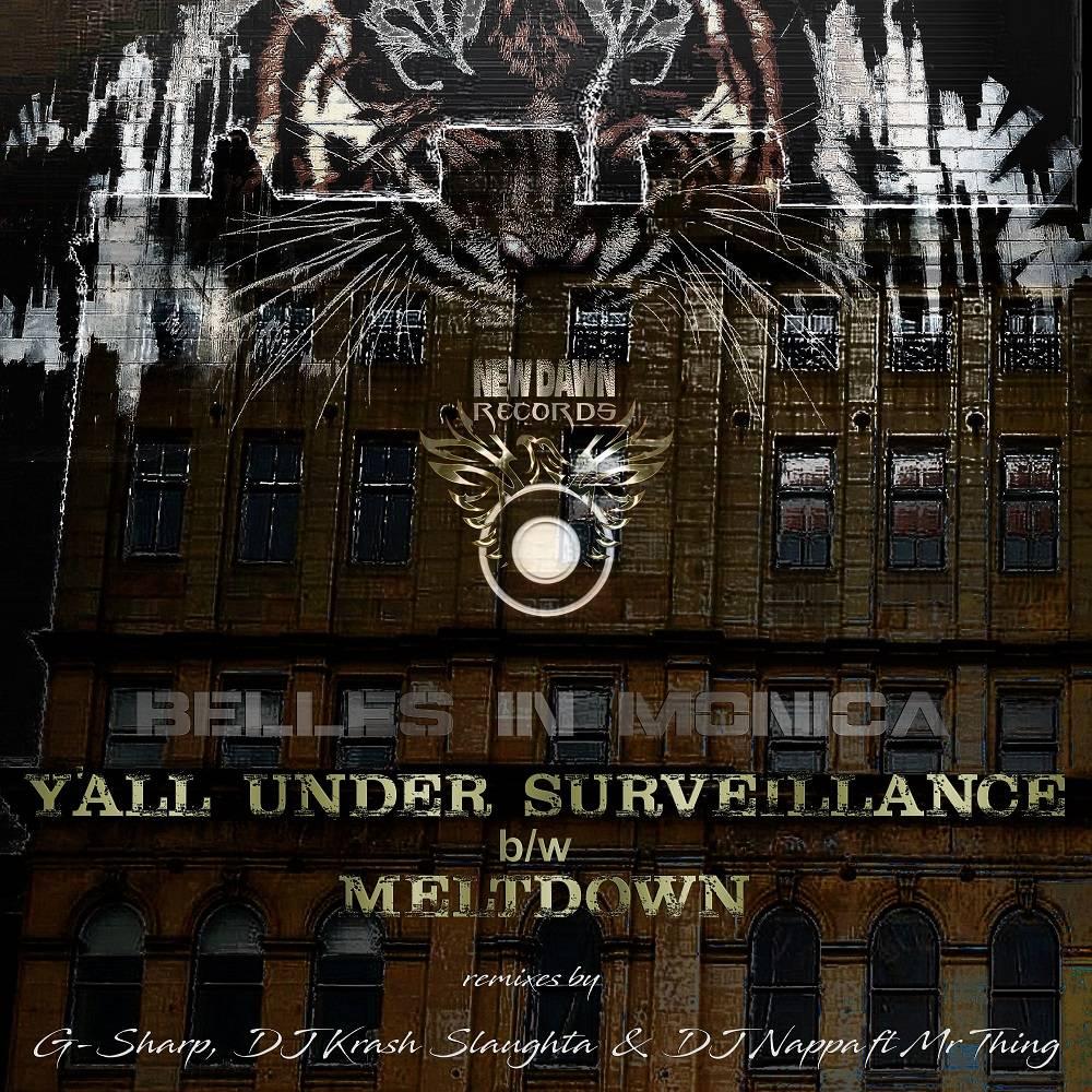 MP3: Belles In Monica - Y'All Under Surveillance/Meltdown