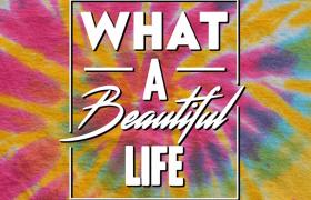 D WEBB - What A Beautiful Life [Album Artwork]