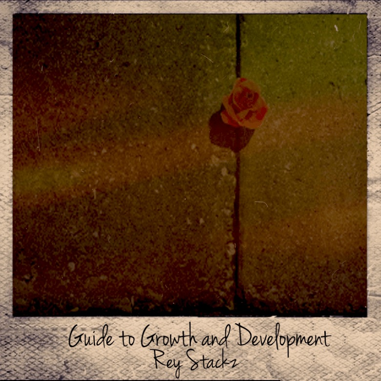 Editorial: @VannDigital Reviews 'The Guide To Growth & Development' By Rey Stackz (@RealReyStackz)