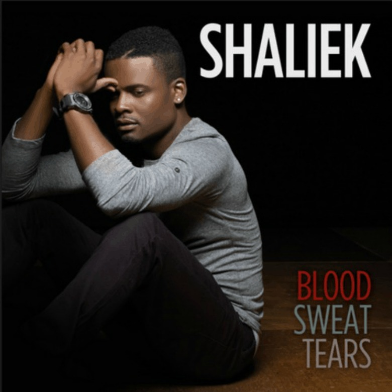 Editorial: @VannDigital Reviews 'Blood Sweat Tears' By Shaliek (@OfficialShaliek)