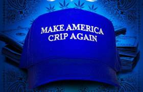 The Purpose Of Snoop Dogg's New Single Is To 'Make America Crip Again'