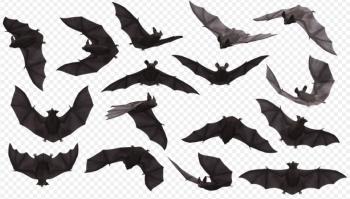 bats, mammals