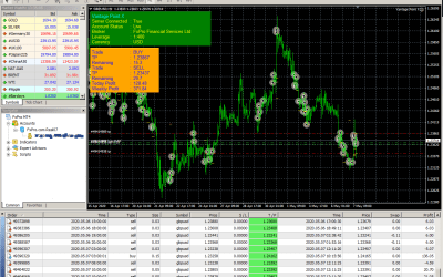 VPX trading profit with 800$ account
