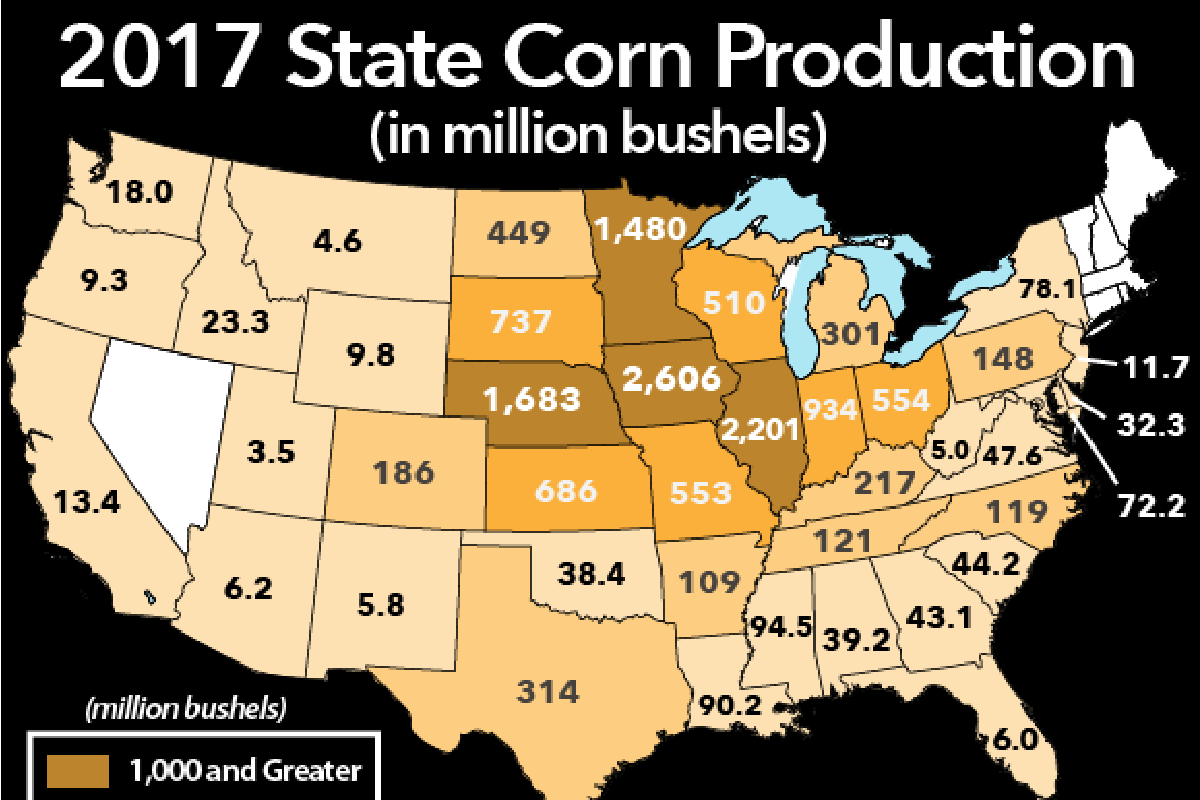 State Corn Production