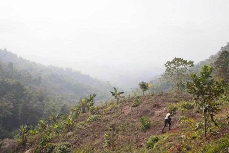 Ivanka v kopcích