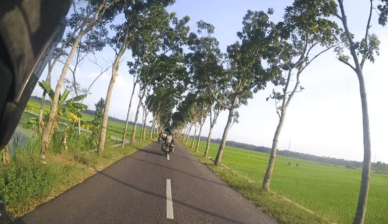 Cesta skr rýžová pole