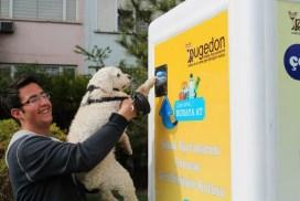 回收廢物 幫助流浪狗