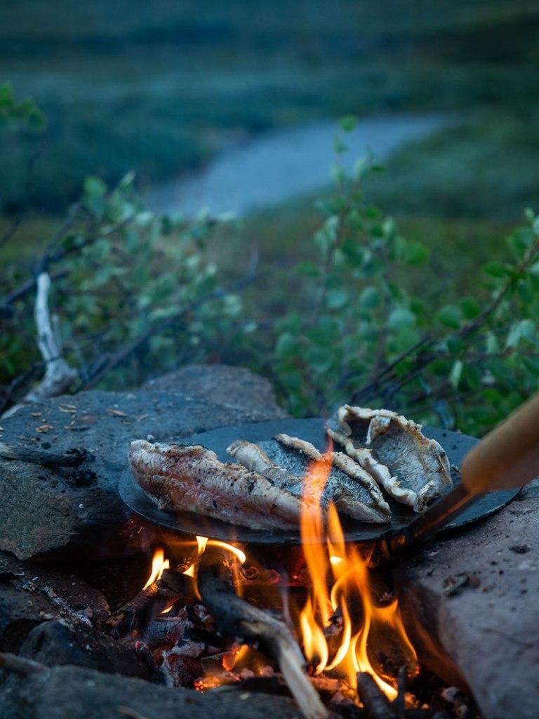 Taimenfile paistuu pannulla Finnmarkissa