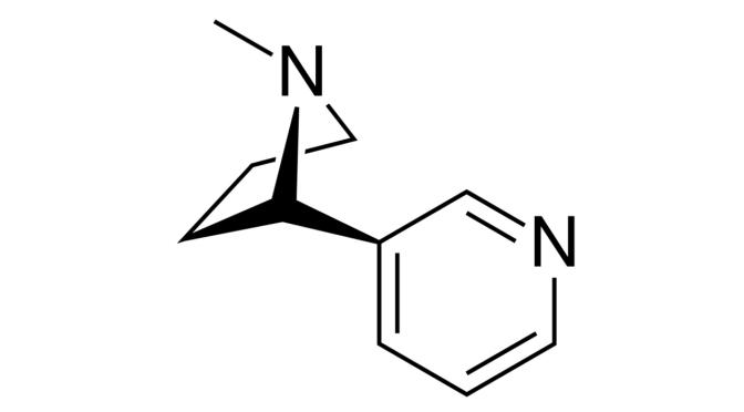 Nicotine Salts vs Freebase Nicotine
