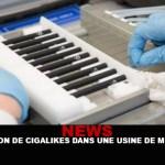 חדשות: ייצור cigalikes במפעל סמים!