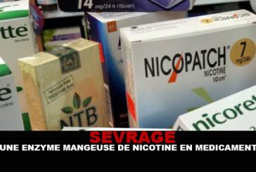 SEVRAGE : une enzyme «mangeuse» de nicotine en médicament ?