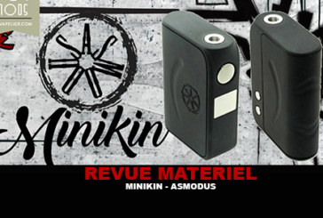 REVIEW: MINIKIN BY ASMODUS