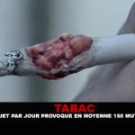 TOBACCO: Smoking a pack a day causes an average of 150 mutations per year.