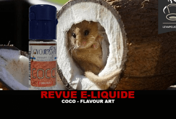 סקירה: COCO על ידי אמנות flavor