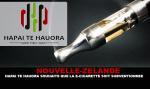 NUEVA ZELANDA: Hāpai Te Hauora quiere que el e-cigarette sea subsidiado.