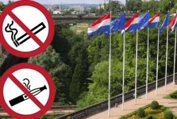לוקסמבורג: ממצב סדיר לתקנה מופרזת?