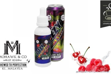 REVIEW: Fizzy Wild Berries van Mohawk & Co