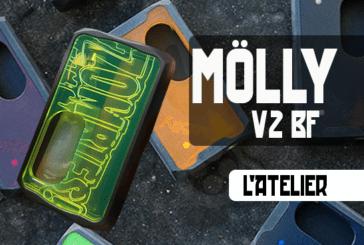 BATCH INFO:Möllyv2 BF(L'Atelier)