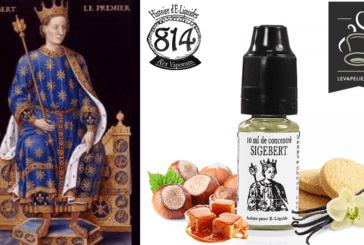 סקירה: Sigebert (סיפורי e-liquid) על ידי 814