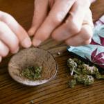 FRANCE : Les buralistes, futur premier réseau de référence du cannabis ?