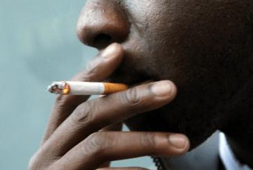 NIGER : Le gouvernement examine une proposition de loi anti-tabac