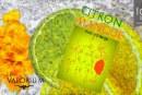 REVUE / TEST : Citron – Mangue (Gamme Haiku) par Le Vaporium