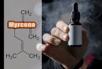 WISSENSCHAFT: β-Myrcen: Bald in E-Liquids verboten?