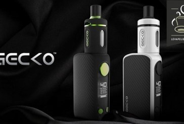 REVUE / TEST: Gecko by JWell