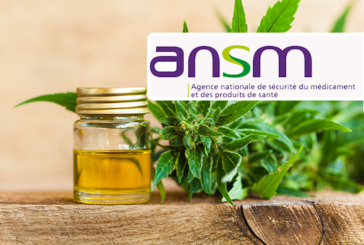 CANNABIDIOL: ANSM worries about products sold on the internet to epileptics