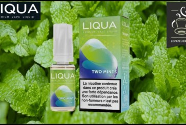 REVIEW / TEST: Two Mints (Elements Range) by Liqua