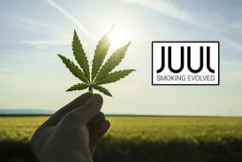 קנדה: Juul E- סיגריה יצרן מזמין בדיון קנאביס