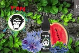 REVUE / TEST: Moustac (Black Range) by V'ape