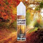 REVUE / TEST : Autumn Leaves (Gamme Se4sons) par High Vaping