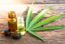 CANADA: Directe legalisatie van vapotageproducten die cannabis bevatten!