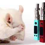 מחקר: סיגריה אלקטרונית, עכבר, ניקוטין והסיכון למספר סוגי סרטן ...