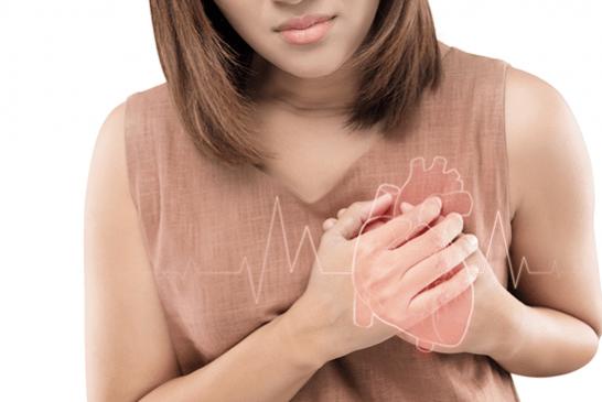 מחקר: הערמונית מזיקה יותר מטבק לבריאות הלב וכלי הדם?