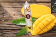REVISIONE / PROVA: Mango di Zap! Succo