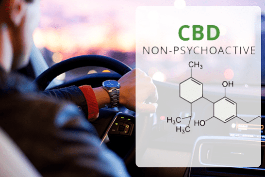 SCIENCE: CBD vaporization does not affect driving more than a placebo