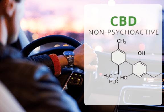 科学:CBD蒸发对驾驶的影响不超过安慰剂