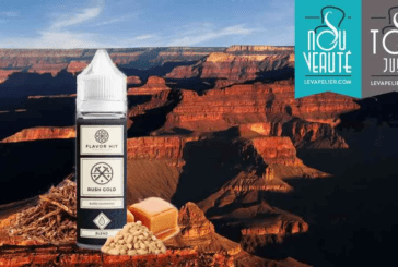 REVIEW / TEST: Rush Gold door Flavour Hit Vaping Club