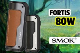 INFORMAZIONI SUL LOTTO: Fortis 80W (fumo)