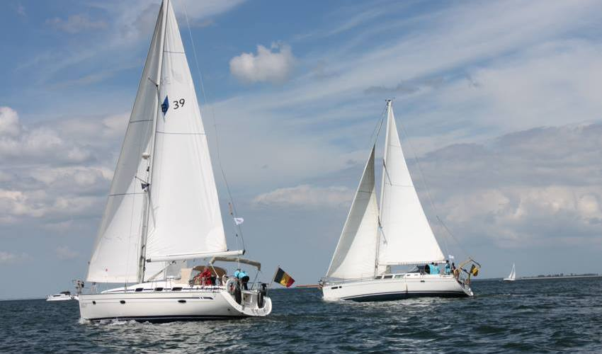 Lions for Sail 2016