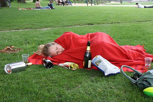 Picnic booze snooze