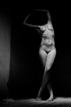 Sculpture #3 (2015.)